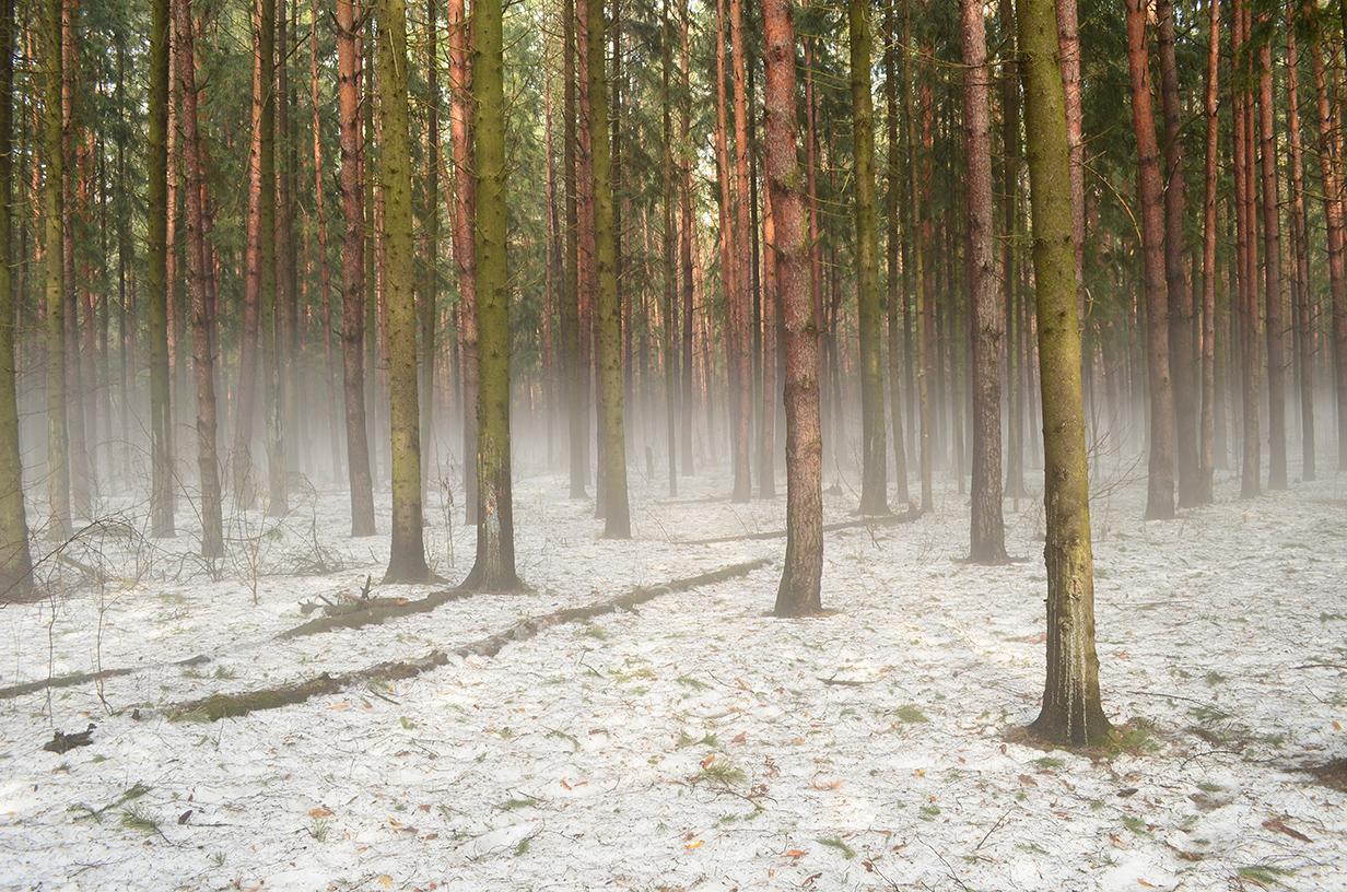 Прогноз погода в нижнекамске на 3 дня