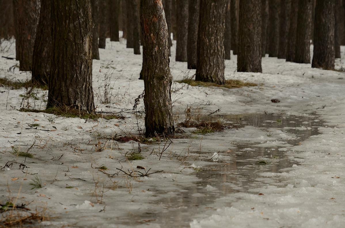 Погода в большой арбай красноярского края